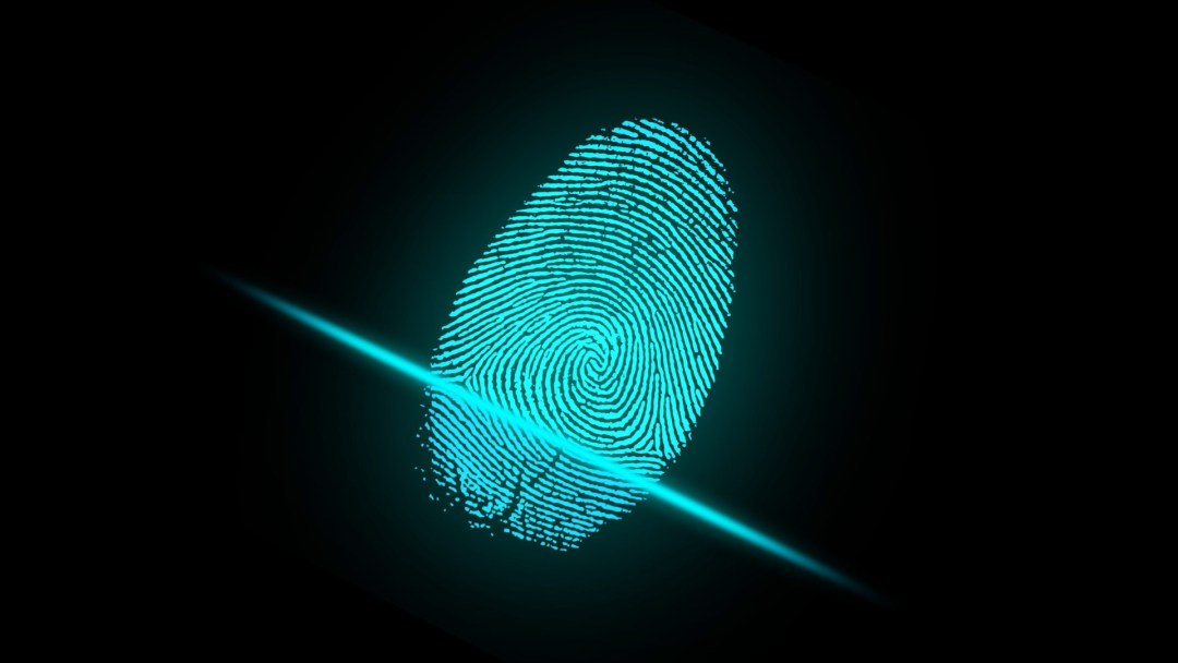 finger, fingerprint, security