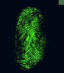 fingerprint, daktylogramm, papillary