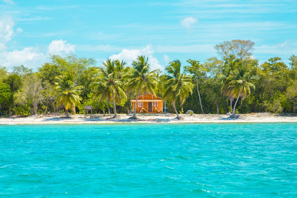 Photo of wooden cabin on beach near coconut trees