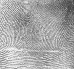 Integrated Biometrics advances contactless fingerprint intellectual property